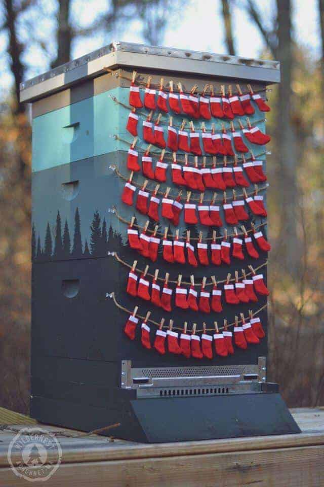 Bees Putting out Their Christmas Stockings
