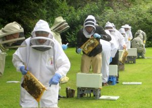 beginner beekeepers receiving instruction